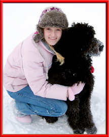 Henry and goldendoodles emjoy the snow